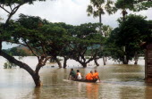 Two Budhist monks in a canoe being rowed through flood water on Route 1 from Neak Long to Svay Rieng.