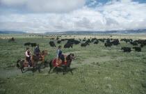 Nomadic horsemen and women herding yaks on the high grasslands.
