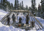 A group of people constructing a camp out of wood in the snow.