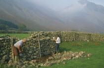 Men reparing drystone wall Wasdale Head Lake District
