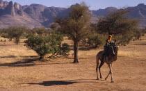 Touareg man on camel passing the Dyounde Mountains.