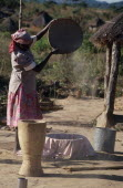 Woman winnowing grain.African Eastern Africa Mozambiquean Female Women Girl Lady Female Woman Girl Lady Agriculture Farm Farming Agraian Agricultural Growing Husbandry  Land Producing Raising