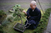 Zen Buddhist monk and bonsai tree