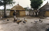 Village scene with thatched mud huts and man feeding chickens.