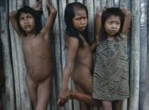 Xikrin Indian girls.Brasil Kayapo Brazil Kaiapo Mebengorke