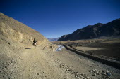 China, Tibet, Shigatse, Man on pony riding along dusty road leading past ploughed fields .