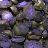 Purple Potatoes - Pink Fur ApplesFresh food Great Britain UK United Kingdom British Isles Northern Europe