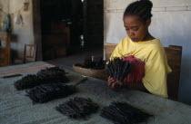 Woman grading vanilla pods.African Eastern Africa Madagascaran Madagasikara  African Eastern Africa Madagascaran Madagasikara