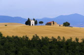 ITALY, Tuscany, Val D'Orcia, Chapel and farmhouse set amongst wheatfields on the top of a hill.