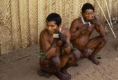Barasana men applying dark red ochote  from fruit seeds  facial paint  also apply dark purple we dye from boiled leaves of forest liana in  geometric designs over legs arms and hands.Tukano sedentary...