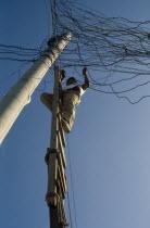 Barrio Indio Guayas slum neighbourhood. Man on ladder illegally connecting into the overhead mains electricity supply. American Equador Hispanic Latin America Latino Male Men Guy Neighbourhood Distri...