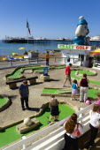 England, East Sussex, Brighton, Adults and children playing miniature golf on a Crazy Golf course on the promenade with Brighton Pier and the pebble shingle beach beyond.