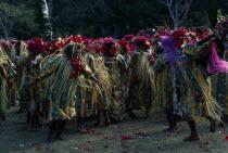 Pacific Islands, Melanesia, Vanuatu, Women dancers in costume at ceremony.