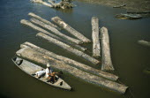 Brazil, Amazonas, Amatura, Floating logs down river.