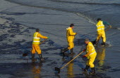 Wales, Pembrokeshire, Tenby, Workers clearing oil in Tenby Harbour from the Sea Empress spill.