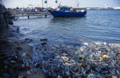 Libya, Tripolitania, Tripoli, Plastic water bottles and other rubbish polluting harbour.