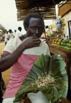 Uganda, Jinja, Man eating live white flying ants, a common snack.