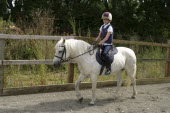 Sport, Equestrian, A young horse rider riding her pony.