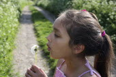 Children, Playing, Outdoors, A nine year old girl blowing dandelion seeds.
