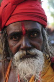 India, Uttarakhand, Hardiwar, Head and shoulders portrait of a Saddhu during Kumbh Mela, Indias biggest religious festival where many different traditions of Hinduism come together to bathe in the Gan...