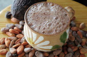Mexico, Oaxaca, Chocolate caliente, hot chocolate in painted cup with cocoa beans and pod.