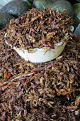 Mexico, Oaxaca, Dried chapulines or grasshoppers.
