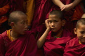 India, Sikkim, Portrait of novice Buddhist Monks.
