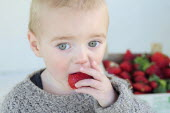 Kids, Eating, Fruit, 2 year old Oscar eating first strawberries of the year in February.