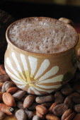 Mexico, Oaxaca, Chocolate caliente, hot chocolate in painted cup with cocoa beans.