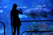 Mexico, Veracuz, Visitor silhouetted against glass, watching fish at the Aquarium, using mobile phone to take photograph.