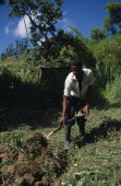 West Indies, Jamaica, Agriculture, man using fork to dig soil.