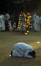 Sri Lanka, Anuradhapura, prayers at the sacred Bo treeFficusRreligiosa during Posen festival celebrating introduction of buddhism to Sri Lanka.