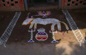 India, Tamil Nadu, Pongal festival, four day festival to mark the end of harvest, painted decoration on ground in front of doorway of house.
