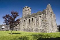 Ireland, County Sligo, Sligo Abbey, Dominican Friary founded in the mid - 13th century.