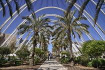 Spain, Valencia Province, Valencia, La Ciudad de las Artes y las Ciencias, City of Arts and Sciences, Interior of the Umbracle sculpture garden.