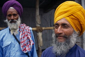 India, Delhi, Portrait of two Sikh men  one standing slightly behind the other with thick grey beards and wearing orange and purple turbans.
