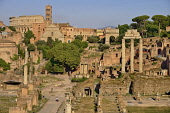 Italy, Lazio, Rome, View of the Roman Forum from Capitoline Hill in evening light with the Colosseum in the background.