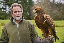 Ireland, County Sligo, Ballymote, Eagles Flying tourist attraction, Golden Eagle.