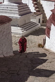 The Ganden Monastery sits at the top of a natural amphitheater on Wangbur Mountain.  It was founded in 1409 A.D.  but was mostly destroyed in 1959 by the Chinese military.   It has been partially rebu...