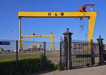 Ireland, County Antrim, Belfast, Queens Island, Harland and Wolff cranes Samson and Goliath.