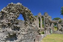 Ireland, County Down, Downpatrick, Inch Abbey ruins.