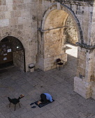 Israel, Jerusalem, A Muslim man kneels on his prayer rug and offers prayers by the inside of the East Gate or Golden Gate of the Temple Mount or al-Haram ash-Sharif in the Old City. The Old City of Je...