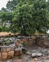 Israel, Ruins of the Old Testament city of Dan in the Tel Dan Nature Reserve in Galilee in northern Israel.