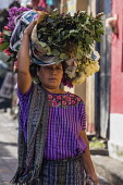 Guatemala, Solola Department, Santiago Atitlan, A Mayan woman wearing traditional dress carries bundles of flowers on her head in the market.