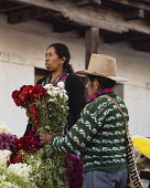 Guatemala, El Quiche Department, Chichicastenango, A Quiche Mayan man buys a bouqet of flowers at the flower market on the steps of the Church of Santo Tomas.