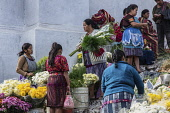 Guatemala, El Quiche Department, Chichicastenango, Quiche Mayan women in traditional dress selling flowers on the steps of the Church of Santo Tomas.