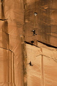 USA, Utah, Moab, A base jumper leaps off the 400 foot vertical face of the Tombstone in Kane Springs Canyon. He has deployed his pilot chute. Note his shadow on the cliff.