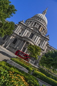 England, London, View of St Paul's Cathedral from Carter Lane Gardens with iconic red London bus passing by.