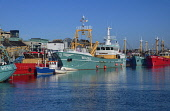 Republic of Ireland, County Wexford, Wexford town, Harbour with boats moored.