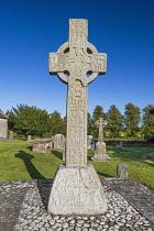 Republic of Ireland, County Kildare, Castledermot, Dermots Hermitage or Diseart Diarmada, the South Cross.